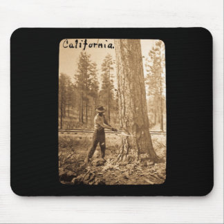 Magic Lantern Logging in the Butte Valley, CA Mouse Pad