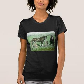 Magic Lantern Slide Horses T-Shirt