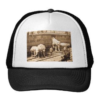 Magic Lantern Slide Ringling Bros Elephant Train Mesh Hats