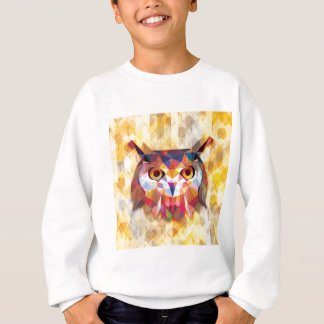Magic Owl Sweatshirt