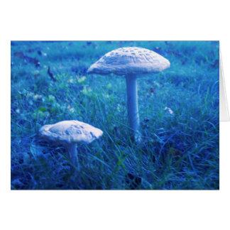 Magic Shroom In Blue Card