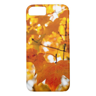 Magical Autumn Afternoon iPhone 7 Case