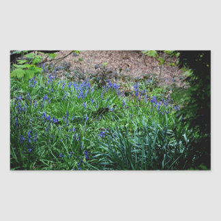 Magical Bluebells Rectangular Sticker