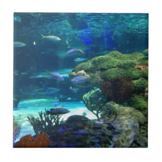 Magical Coral Reef Small Square Tile