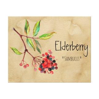 Magical Flowers Elderberry 16.14'' x 12.86'' Canva Canvas Print
