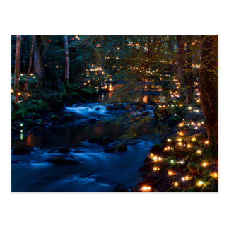 Magical forest at night postcard