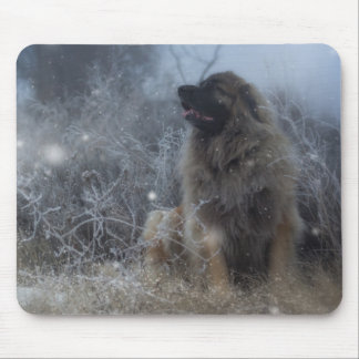 magical Leonberger mousepad