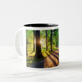 Magical Scenic Sunset Mug