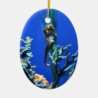 Magical Seahorse Ceramic Oval Decoration