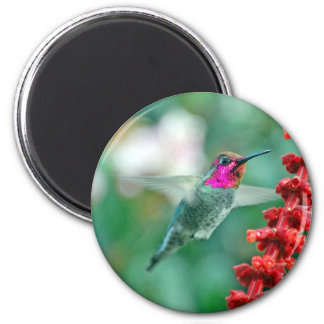 Magical Visitor on Friday the 13th Fridge Magnet