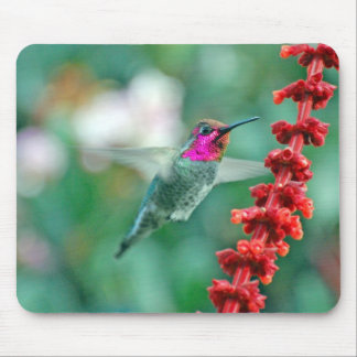 Magical Visitor on Friday the 13th Mouse Pad