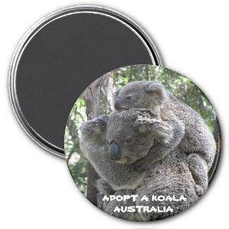 Magnet Adopt A Koala Australia ZIZZAGO
