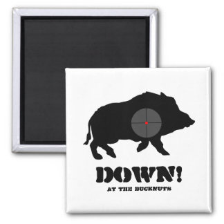 Magnet - Black Hog Down!, At the Bucknuts