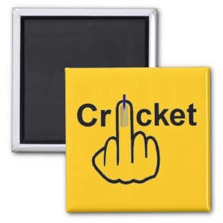 Magnet Cricket Flip
