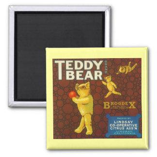 MAGNET ~DESIGN VINTAGE TEDDY BEAR BRAND label AD!