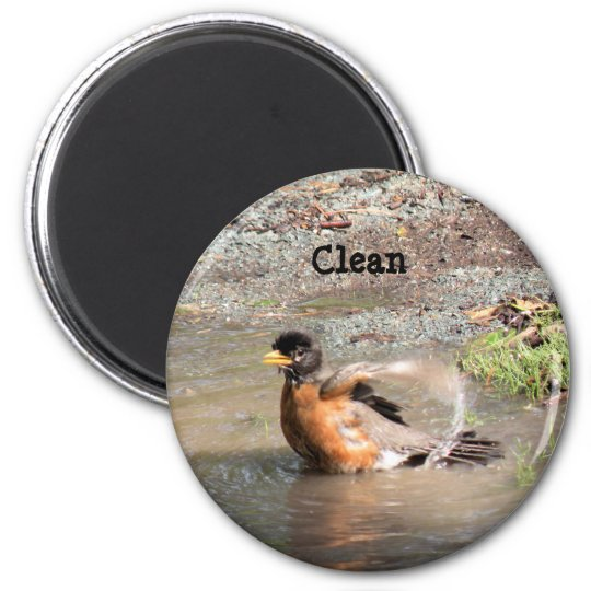 Magnet, Dishwasher, Clean Robin 6 Cm Round Magnet