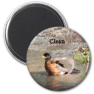 Magnet, Dishwasher, Clean Robin Magnet