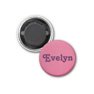 Magnet Evelyn