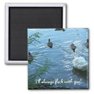 Magnet I ll always flock with you