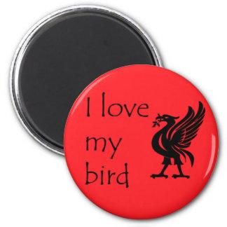 Magnet - Liverpool Liverbird