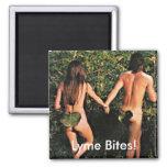 Magnet, Lyme Disease Tick Awareness