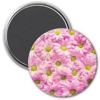 Magnet - Pink Gerbera Daisies