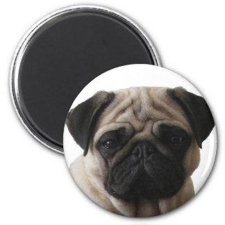 Magnet pug Pug