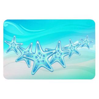Magnet Starfish