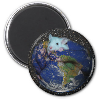 Magnet: Starry World Rat Magnet
