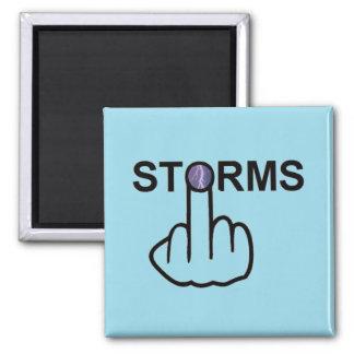Magnet Storms Flip