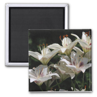 magnet with white lilies