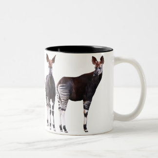 Magnetic cup 2 of okapi