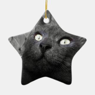 Magnetic eyes ceramic star decoration