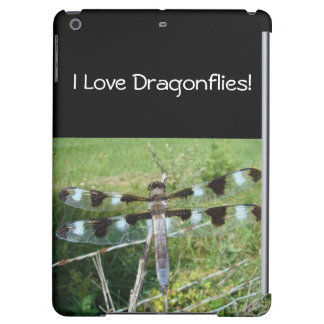 Magnificent Dragonfly, I Love Dragonflies!
