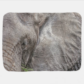Magnificent Elephant Baby Blanket