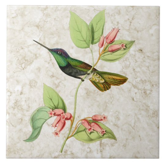 Magnificent Hummingbird Ceramic Tile