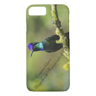 Magnificent Hummingbird iPhone 8/7 Case