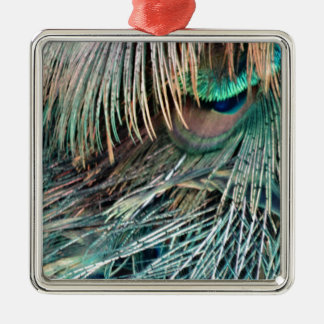Magnificent Peacock  Feather Christmas Ornament
