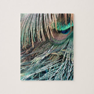 Magnificent Peacock  Feather Jigsaw Puzzle