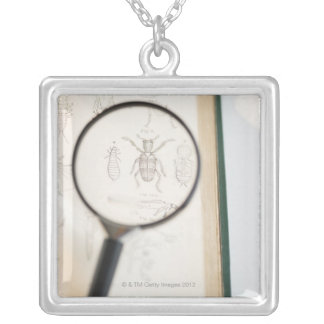 Magnifying glass over book showing insects necklace