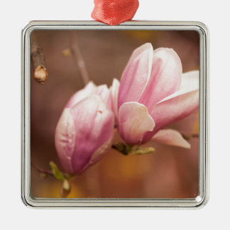 magnolia blooming  on tree Silver-Colored square decoration