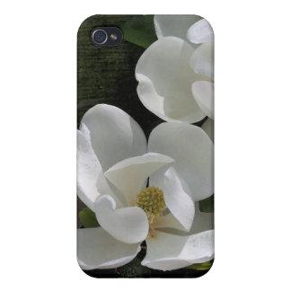 Magnolia Blooms iPhone4 Case iPhone 4 Cover