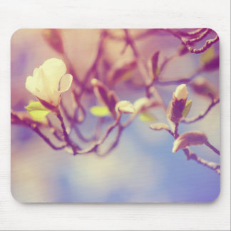 Magnolia Bloosom. Pink Spring in Amsterdam Mouse Pad