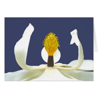 Magnolia Blossom Note Card