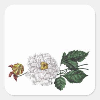 Magnolia Blossom Square Sticker