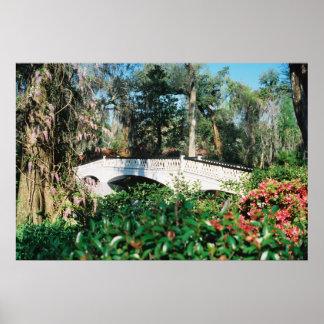 Magnolia Bridge Poster