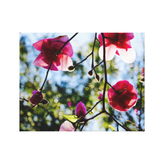 Magnolia - Canvas Art - Tropical Island