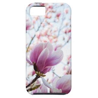 Magnolia case