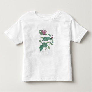 Magnolia discolor, engraved by Legrand (colour lit Toddler T-Shirt