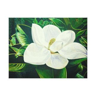 Magnolia Flower Canvas Print